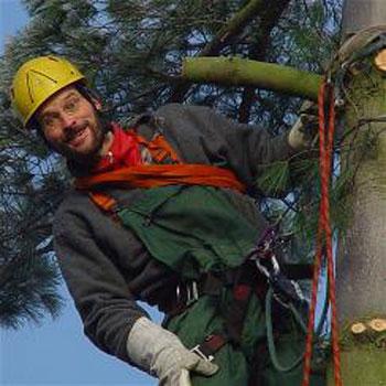 Holger Stamm Baumpfleger mit 20 Jahren Erfahrung